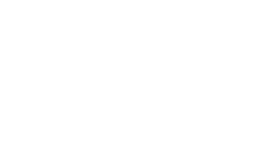 timesstyle